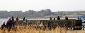 Fiskeri fra Kanaløen i efterårsferien