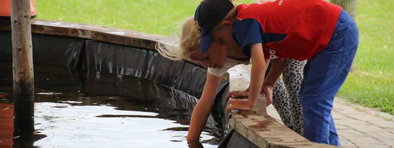 rørebassin aktiviteter for børn