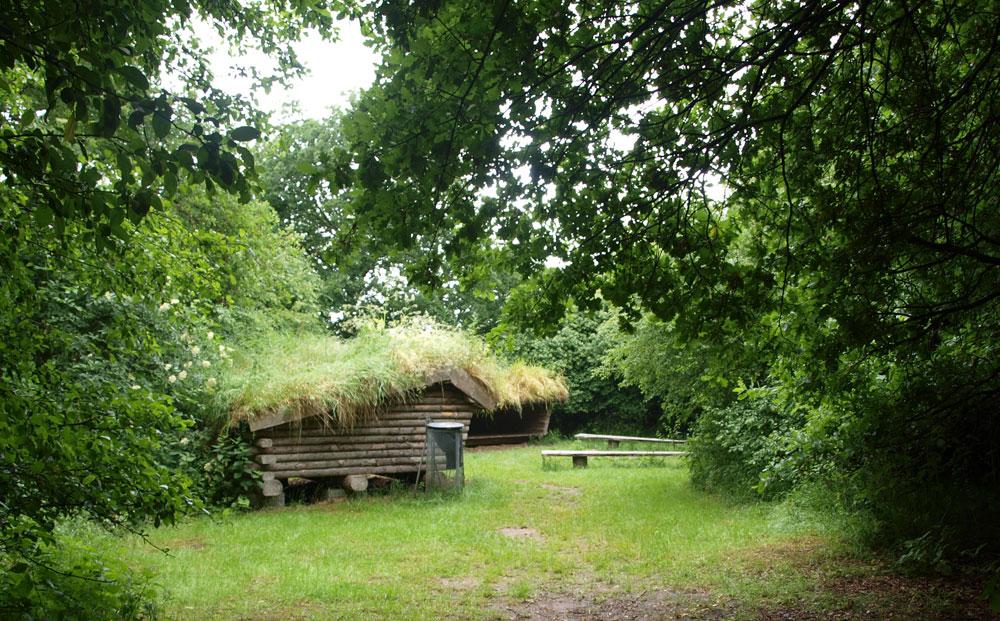 shelters ved bålplads og skov
