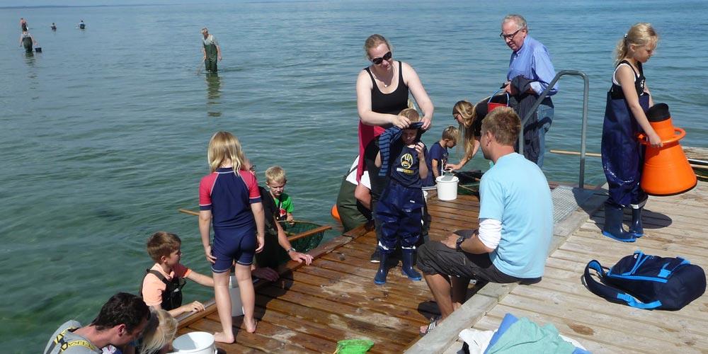 I Fjellerup kan du låne waders, net og spande så du kan fange fisk, krabber og rejer. Vejlederne er klar med de gode forklaringer.